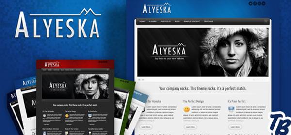 超强大企业网站 Alyeska wordpress商业主题alyeska-premium-html-theme