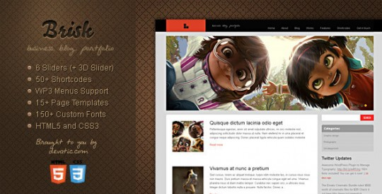 WordPress主题 Brisk 商务 博客  Brisk-Business-Blog-Portfolio-WordPress-Theme-540x274