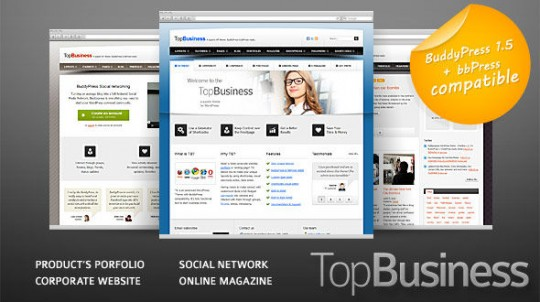 WordPress  TopBusiness BuddyPress 主题 大气企业+杂志 + 社区 TopBusiness-WordPress-and-BuddyPress-theme-540x302
