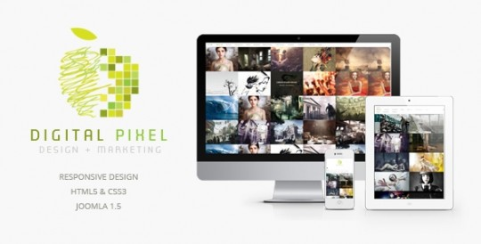 Digital-Pixel-Joomla-template-Joomla 2.5模板 摄影网站 Digital Pixel