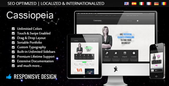 Cassiopeia-Responsive-WordPress-Theme-自适应企业 WordPress主题 Cassiopeia WordPress