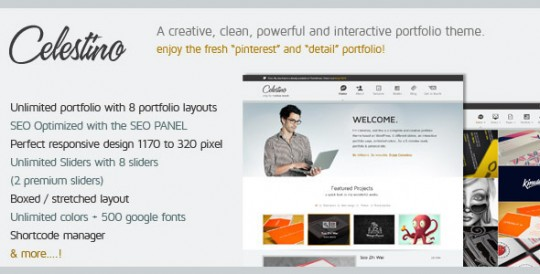 Celestino-Clean-and-Creative-Portfolio-Theme 作品展示WordPress中文主题 Celestino WordPress