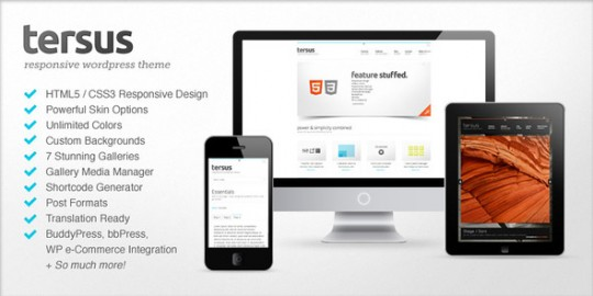Tersus-Responsive-WordPress-Theme 创意wordpress中文主题 Tersus wordpress