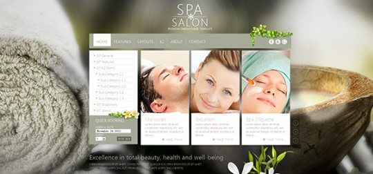 OT SpaSalon Joomla 瑜伽 Joomla模板ot-spasalon-joomla-template